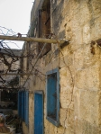 old house and grapevines--  Daoud
